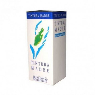 solidago-tintura-madre-60ml